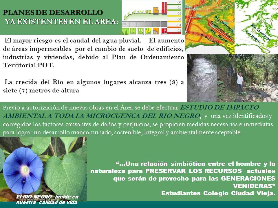 PLANES DE DESARROLLO YA EXISTENTES EN EL AREA: