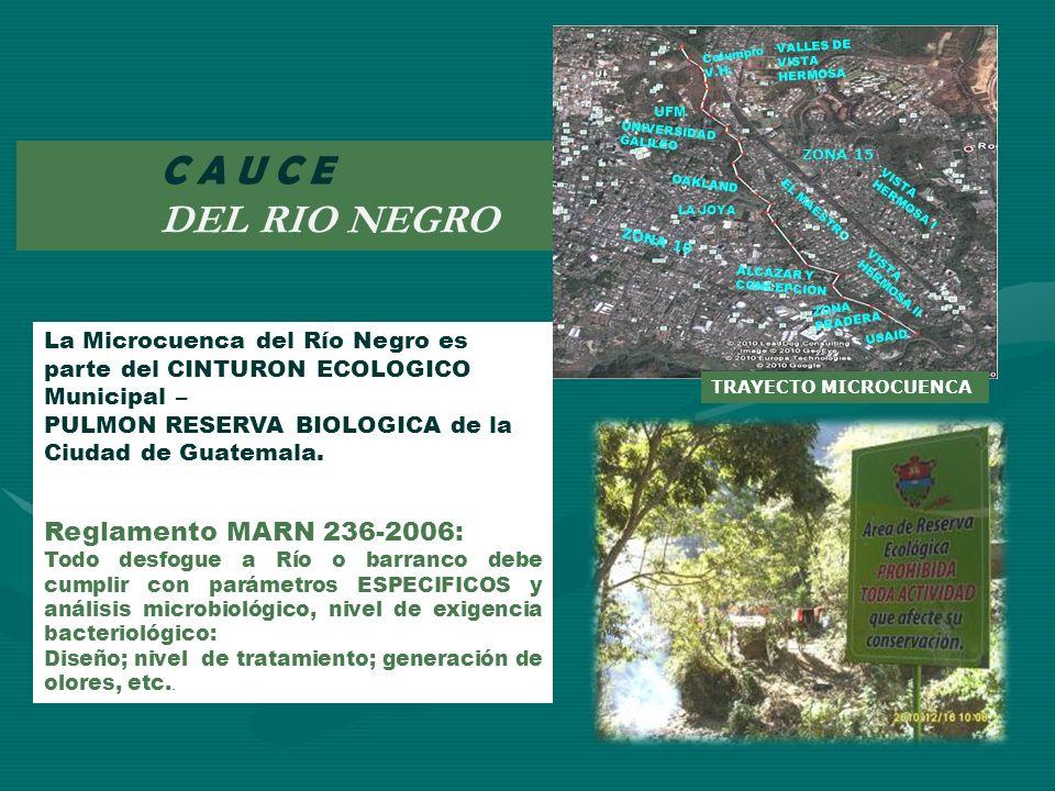C A U C E DEL RIO NEGRO Reglamento MARN 236-2006: