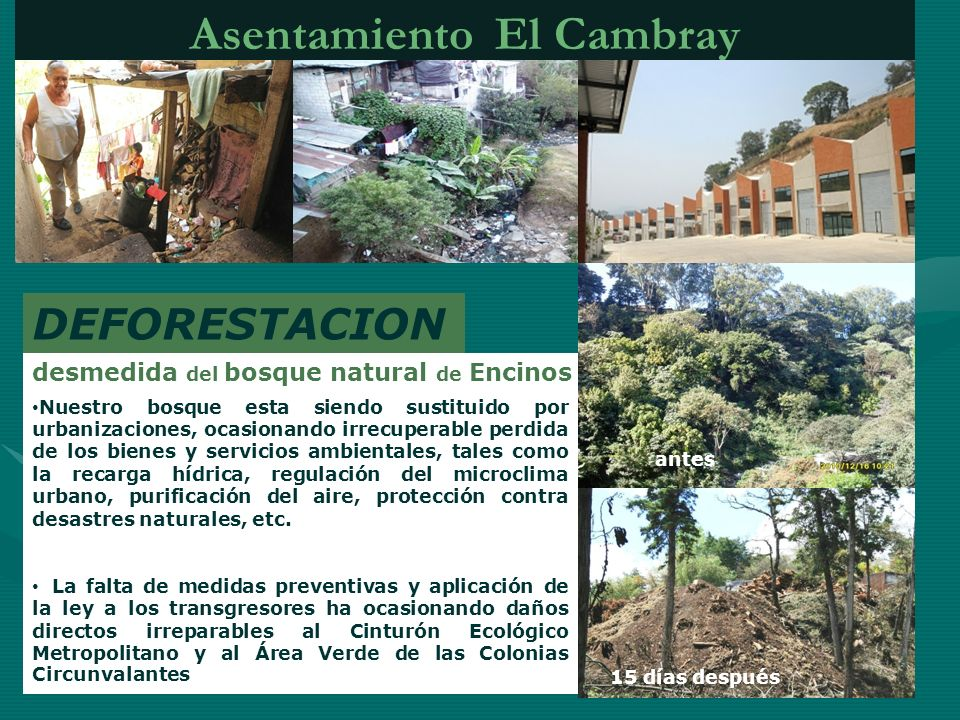 Asentamiento El Cambray