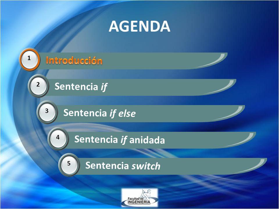 AGENDA Introducción Introducción Sentencia if Sentencia if else