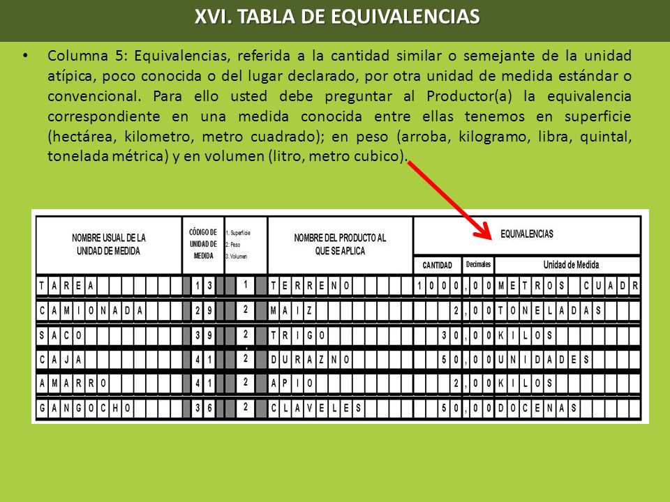 XVI. TABLA DE EQUIVALENCIAS
