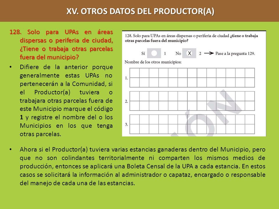 XV. OTROS DATOS DEL PRODUCTOR(A)