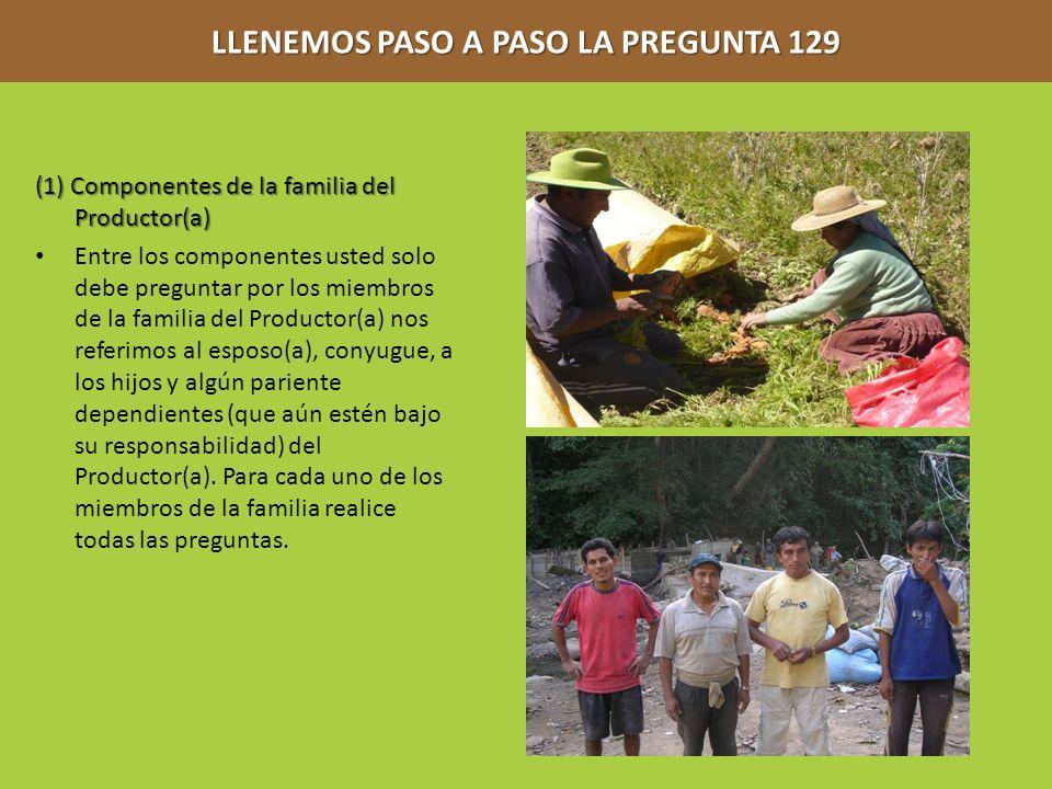 LLENEMOS PASO A PASO LA PREGUNTA 129