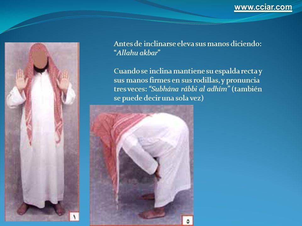 www.cciar.com Antes de inclinarse eleva sus manos diciendo: Allahu akbar