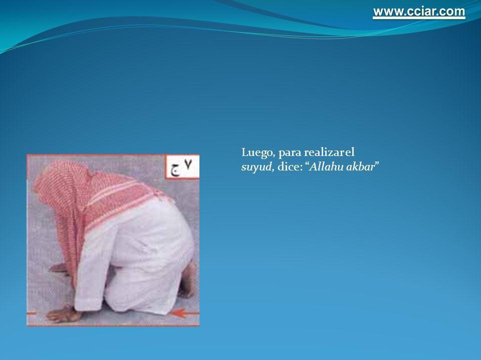 www.cciar.com Luego, para realizar el suyud, dice: Allahu akbar
