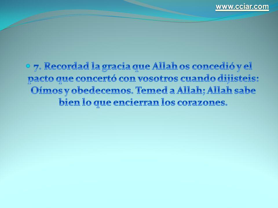www.cciar.com