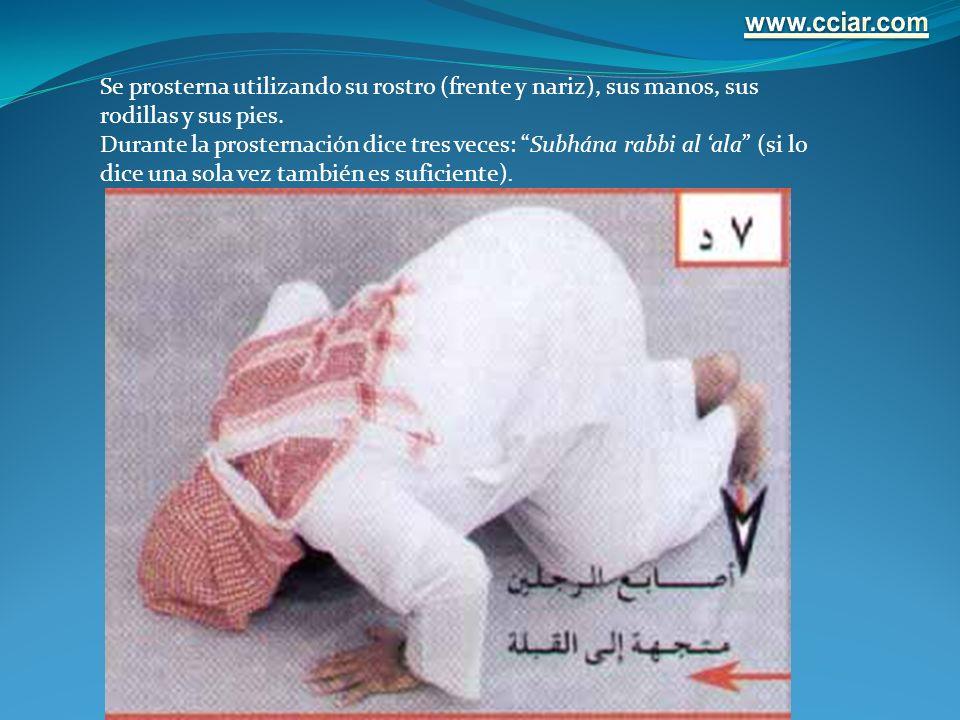 www.cciar.com Se prosterna utilizando su rostro (frente y nariz), sus manos, sus rodillas y sus pies.