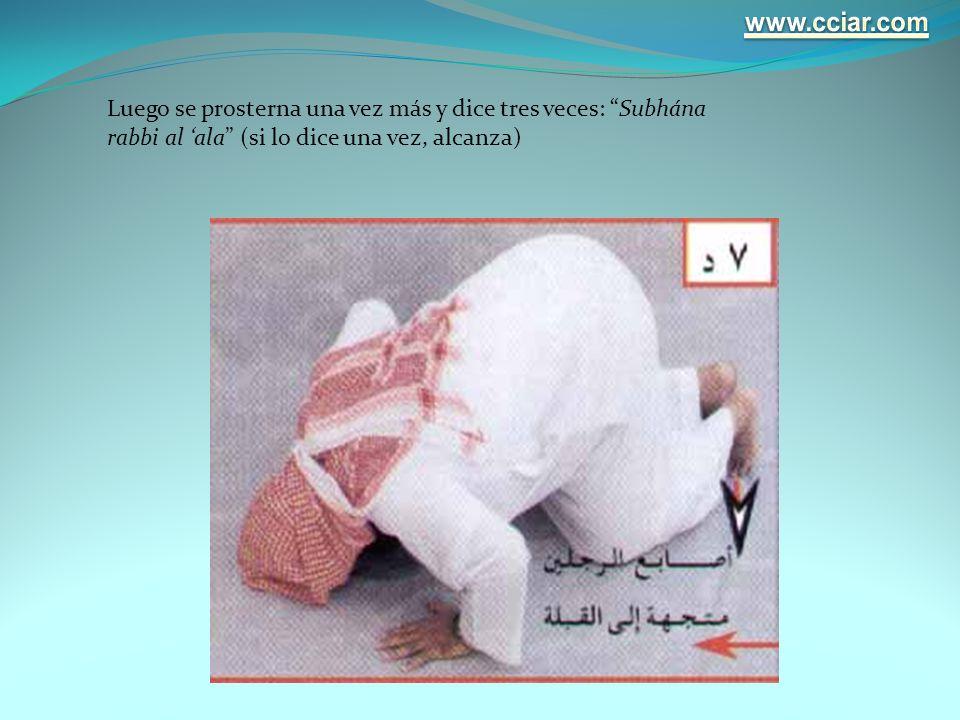 www.cciar.com Luego se prosterna una vez más y dice tres veces: Subhána rabbi al 'ala (si lo dice una vez, alcanza)