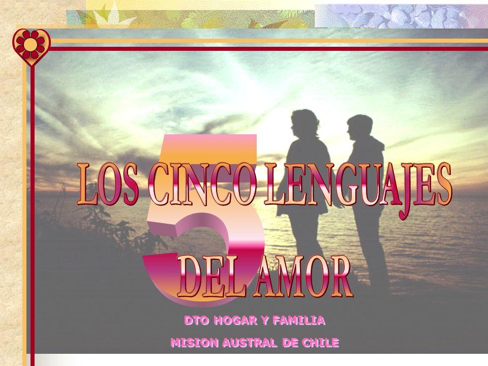 MISION AUSTRAL DE CHILE