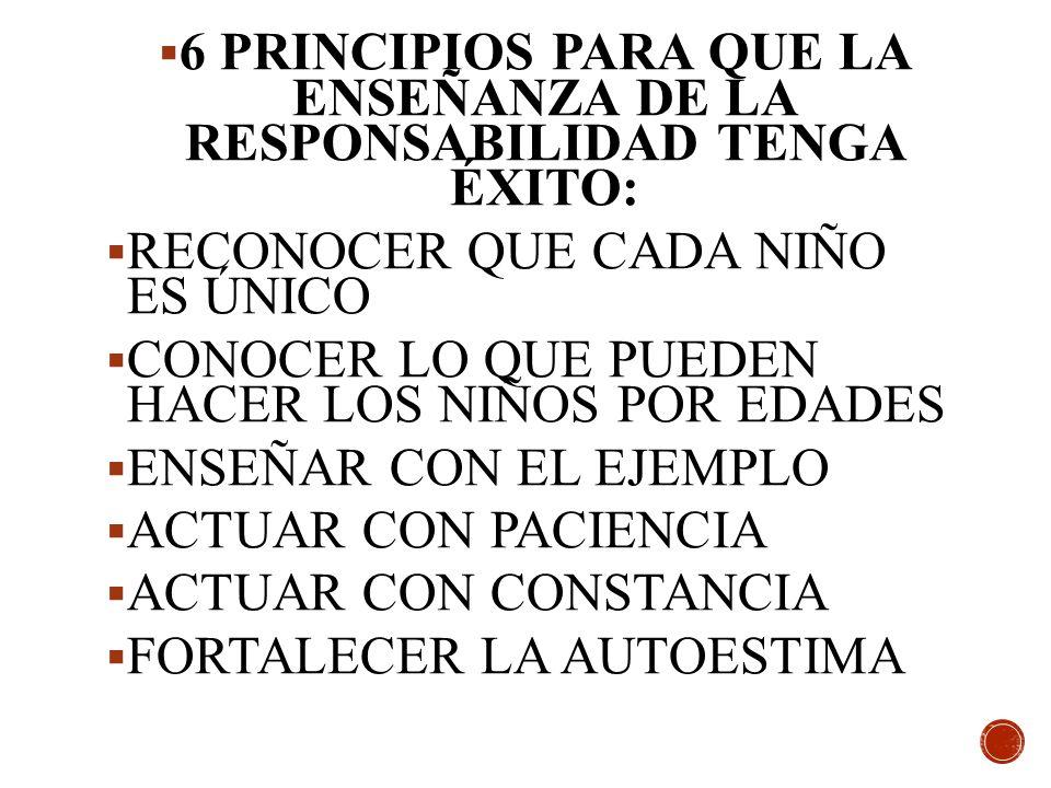 6 PRINCIPIOS PARA QUE LA ENSEÑANZA DE LA RESPONSABILIDAD TENGA ÉXITO: