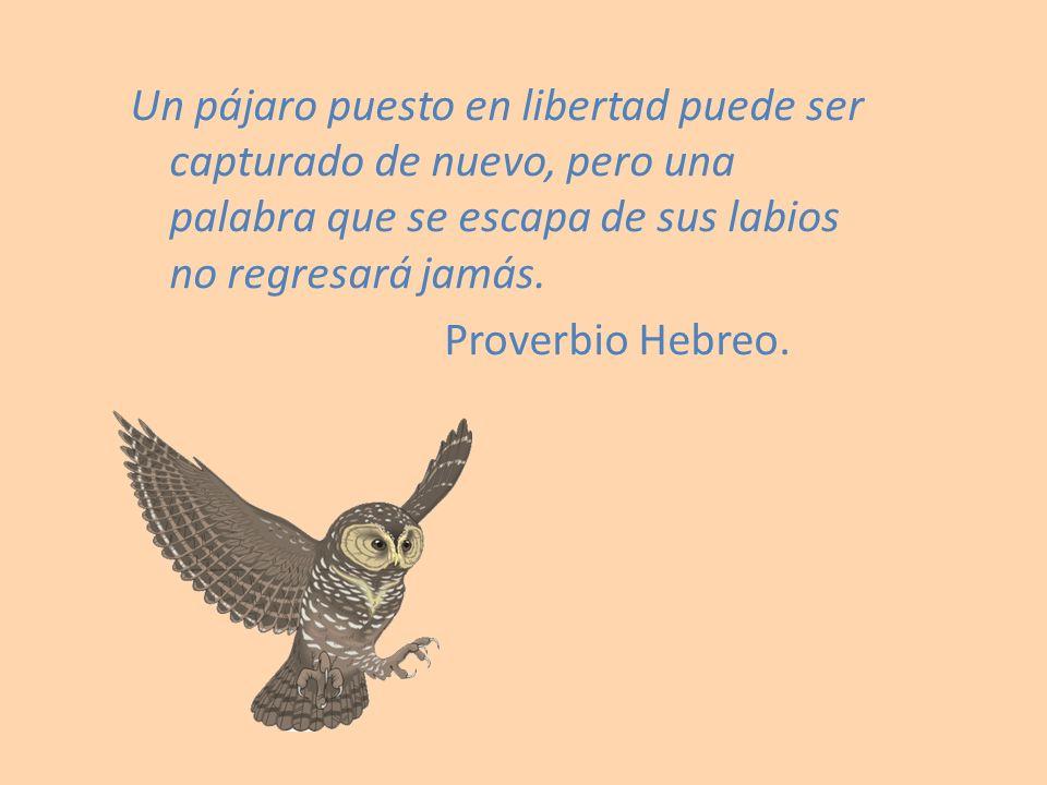 Un pájaro puesto en libertad puede ser capturado de nuevo, pero una palabra que se escapa de sus labios no regresará jamás.