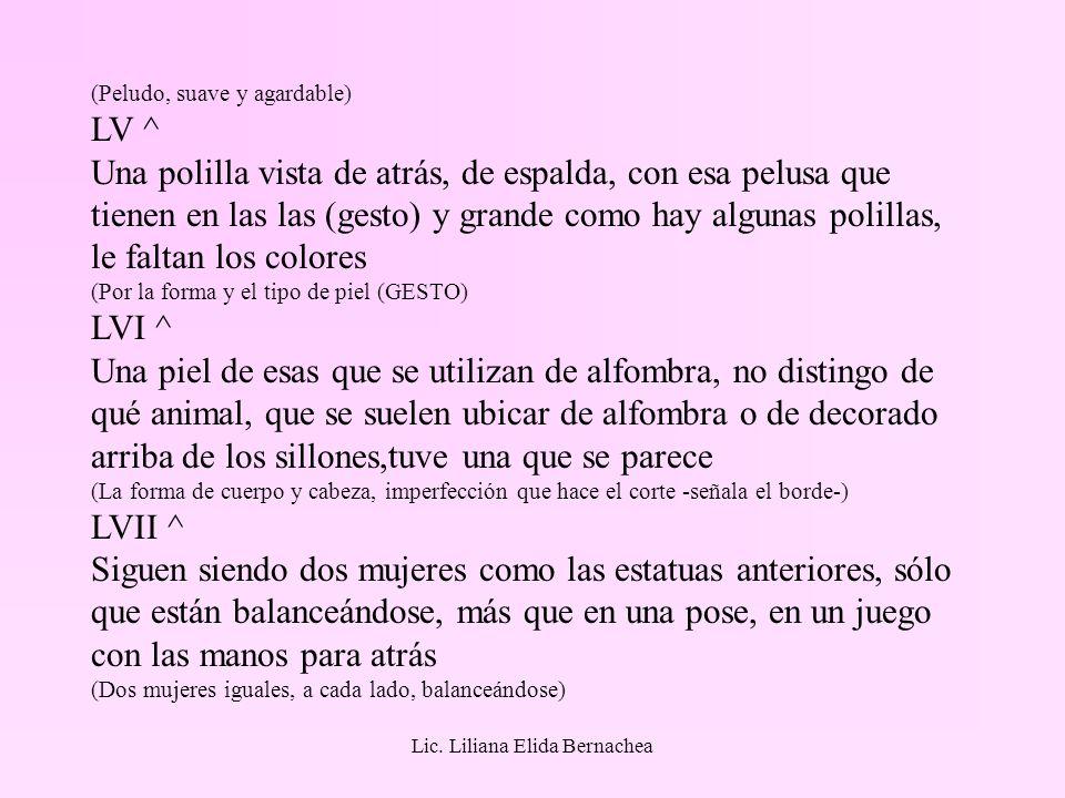 Lic. Liliana Elida Bernachea