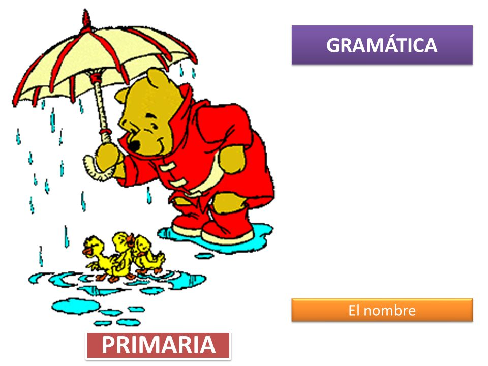 GRAMÁTICA El nombre PRIMARIA