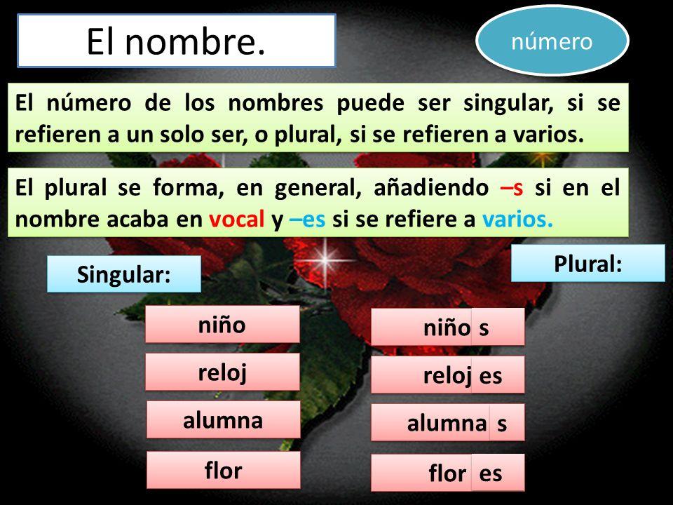 número El nombre. El número de los nombres puede ser singular, si se refieren a un solo ser, o plural, si se refieren a varios.