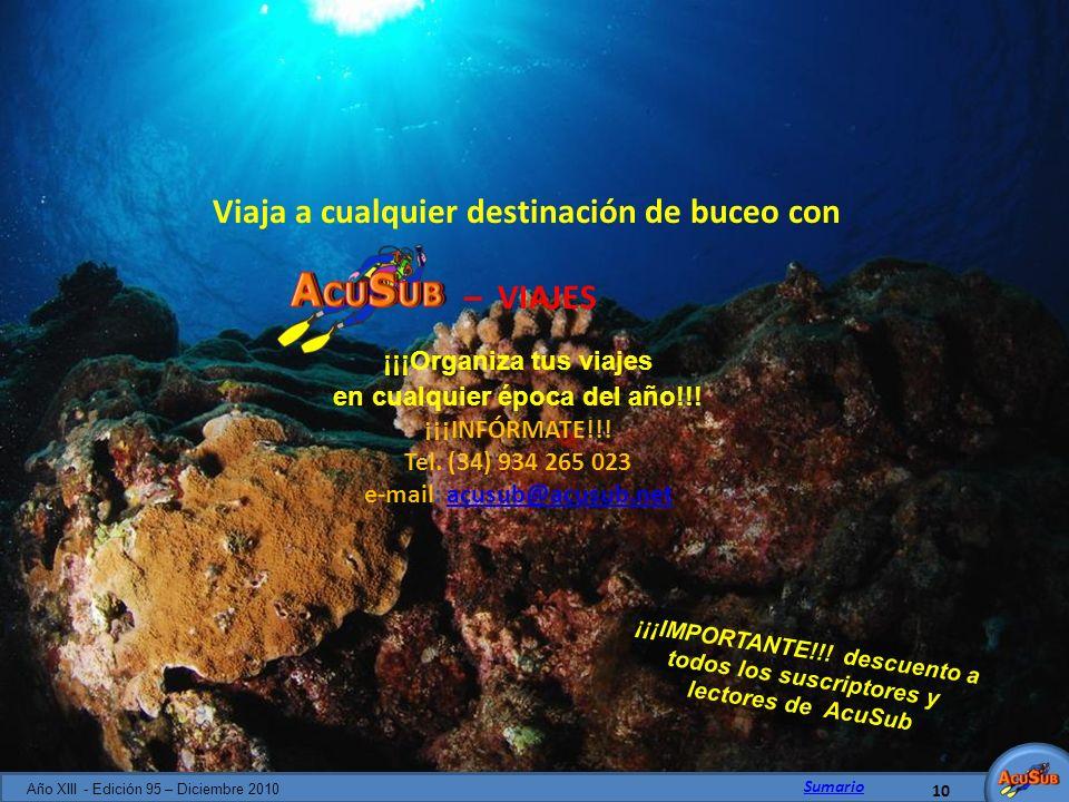 Viaja a cualquier destinación de buceo con – VIAJES