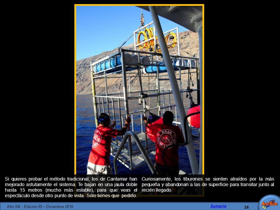 Año XIII - Edición 95 – Diciembre 2010
