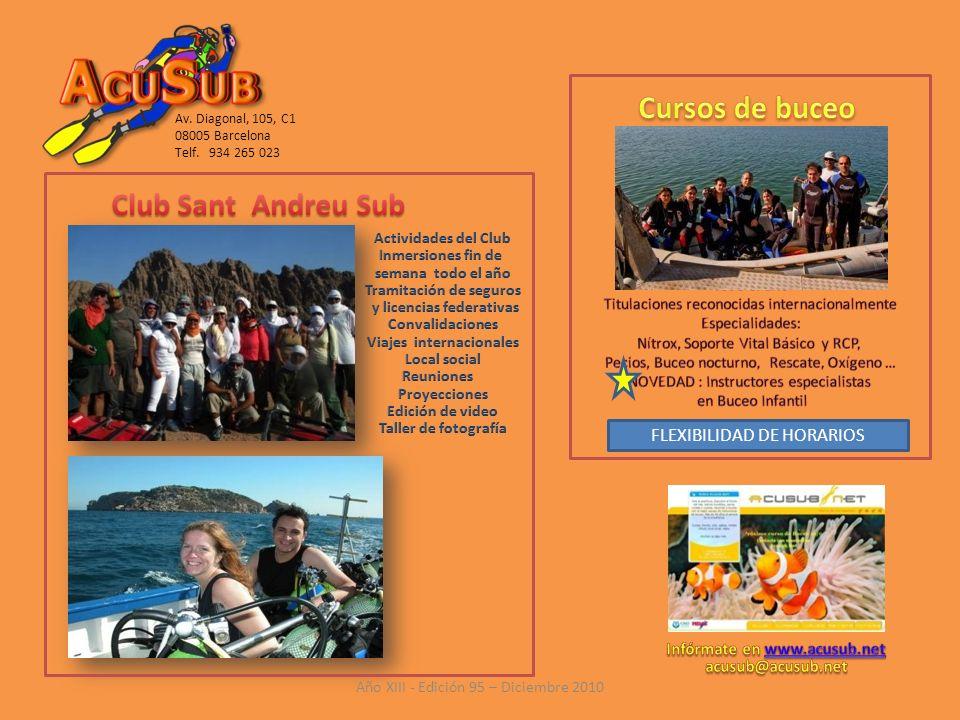Cursos de buceo Club Sant Andreu Sub