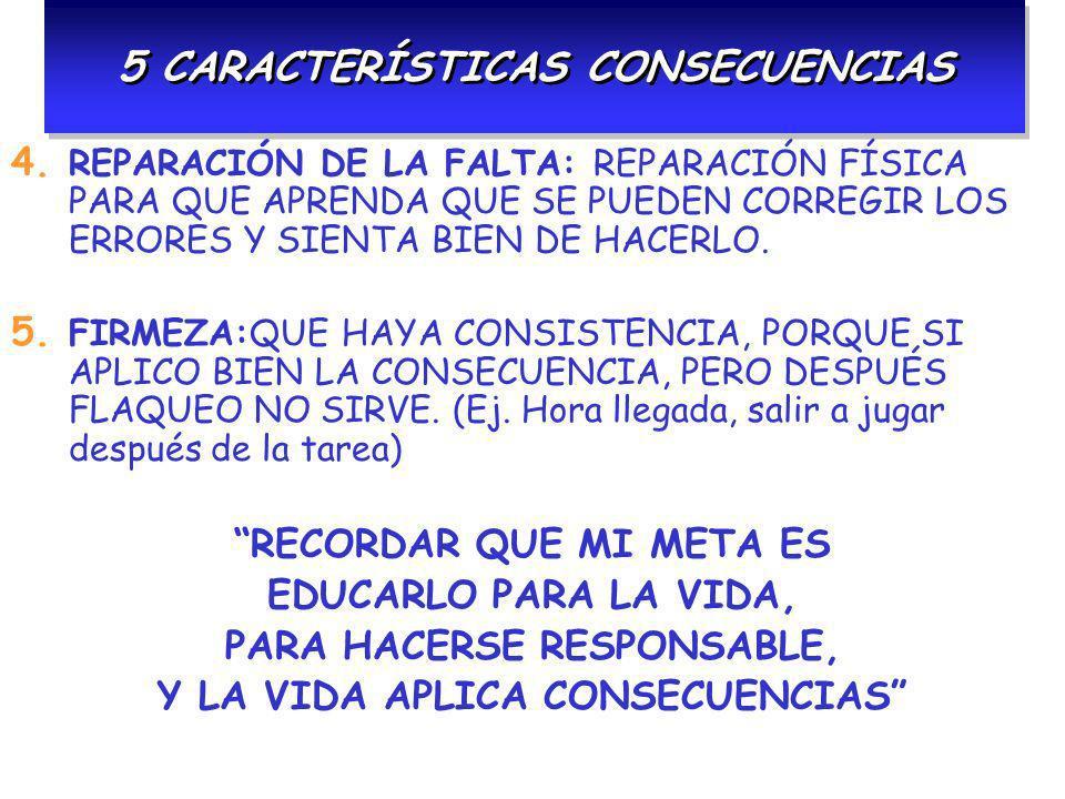 5 CARACTERÍSTICAS CONSECUENCIAS