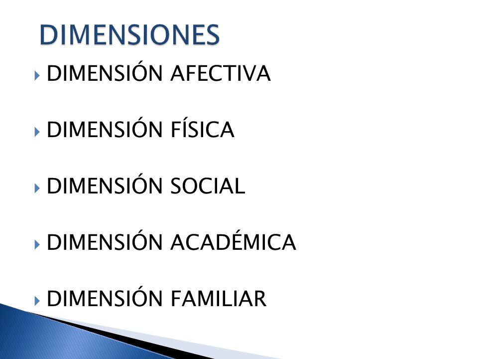 DIMENSIONES DIMENSIÓN AFECTIVA DIMENSIÓN FÍSICA DIMENSIÓN SOCIAL