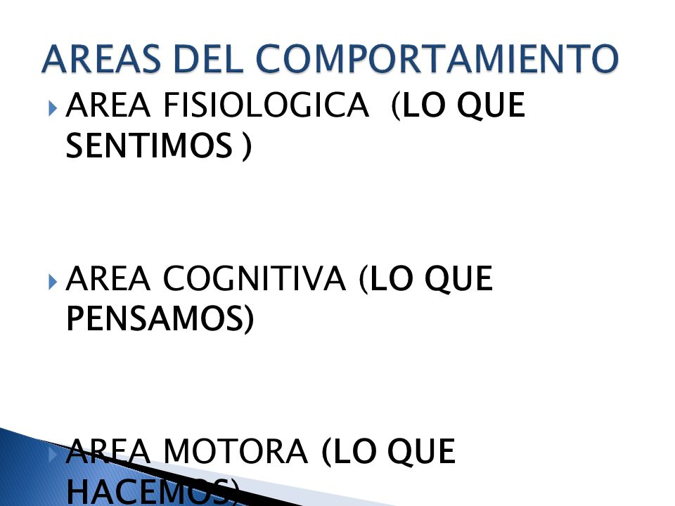 AREAS DEL COMPORTAMIENTO
