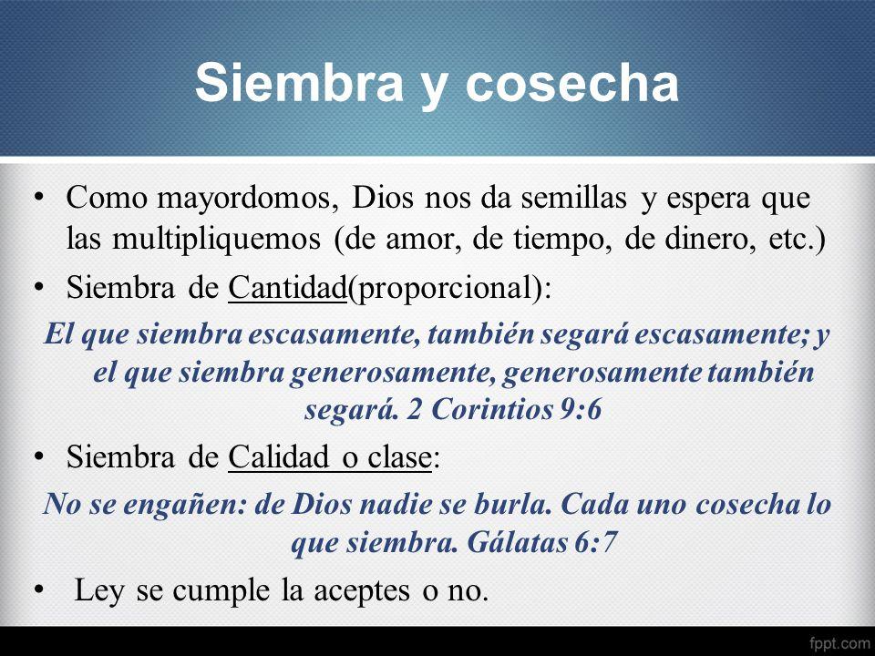 Siembra y cosecha Como mayordomos, Dios nos da semillas y espera que las multipliquemos (de amor, de tiempo, de dinero, etc.)
