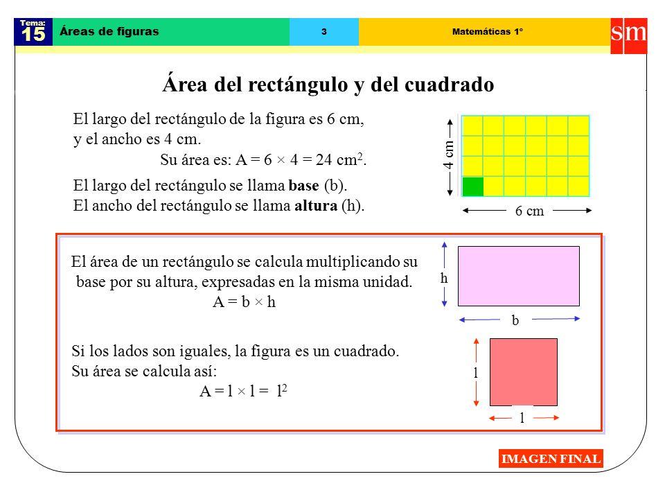 Área del rectángulo y del cuadrado
