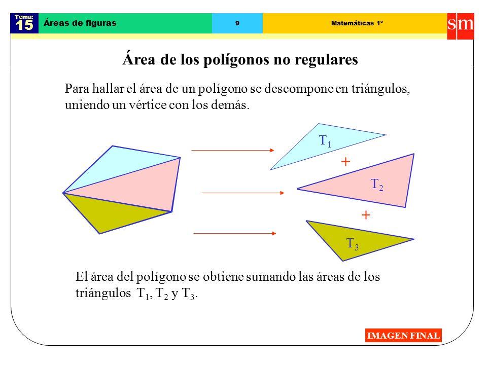 Área de los polígonos no regulares