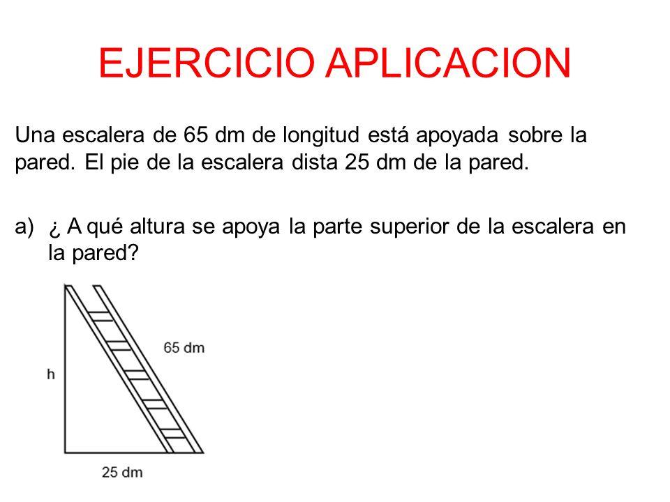 EJERCICIO APLICACION Una escalera de 65 dm de longitud está apoyada sobre la pared. El pie de la escalera dista 25 dm de la pared.