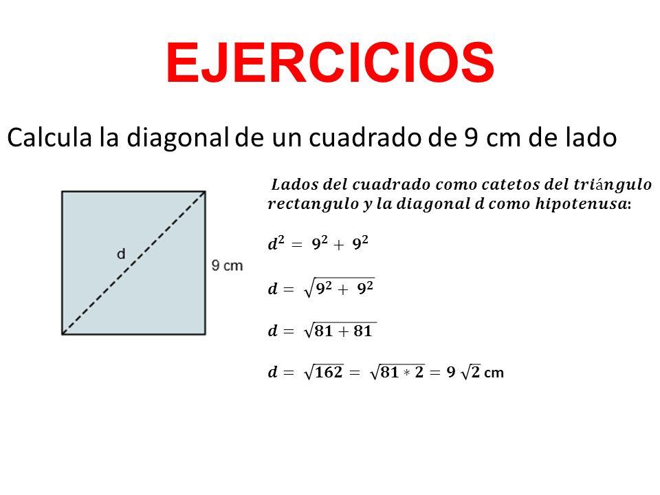 EJERCICIOS Calcula la diagonal de un cuadrado de 9 cm de lado