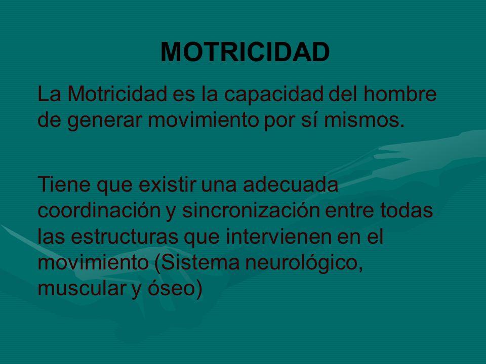 MOTRICIDAD La Motricidad es la capacidad del hombre de generar movimiento por sí mismos.