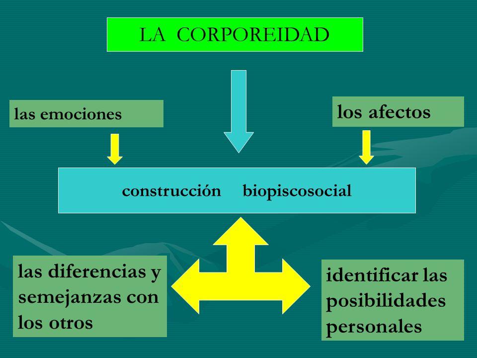 construcción biopiscosocial