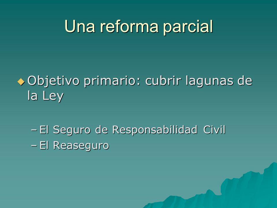 Una reforma parcial Objetivo primario: cubrir lagunas de la Ley