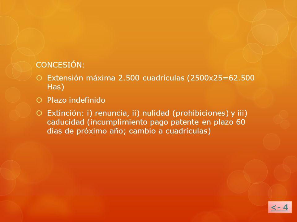 CONCESIÓN:Extensión máxima 2.500 cuadrículas (2500x25=62.500 Has) Plazo indefinido.