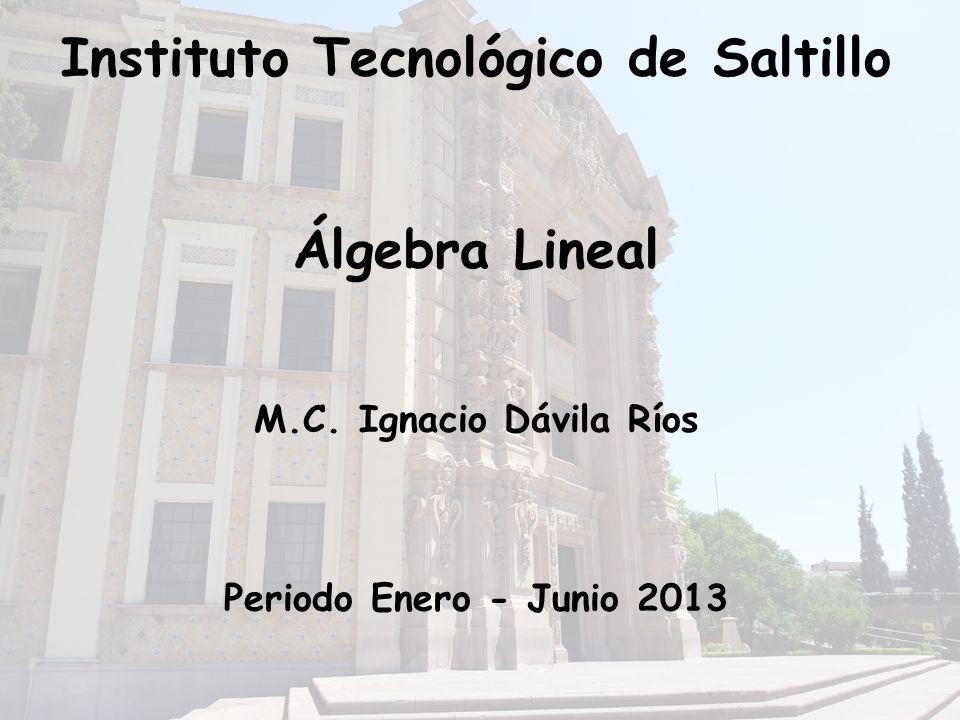 Instituto Tecnológico de Saltillo