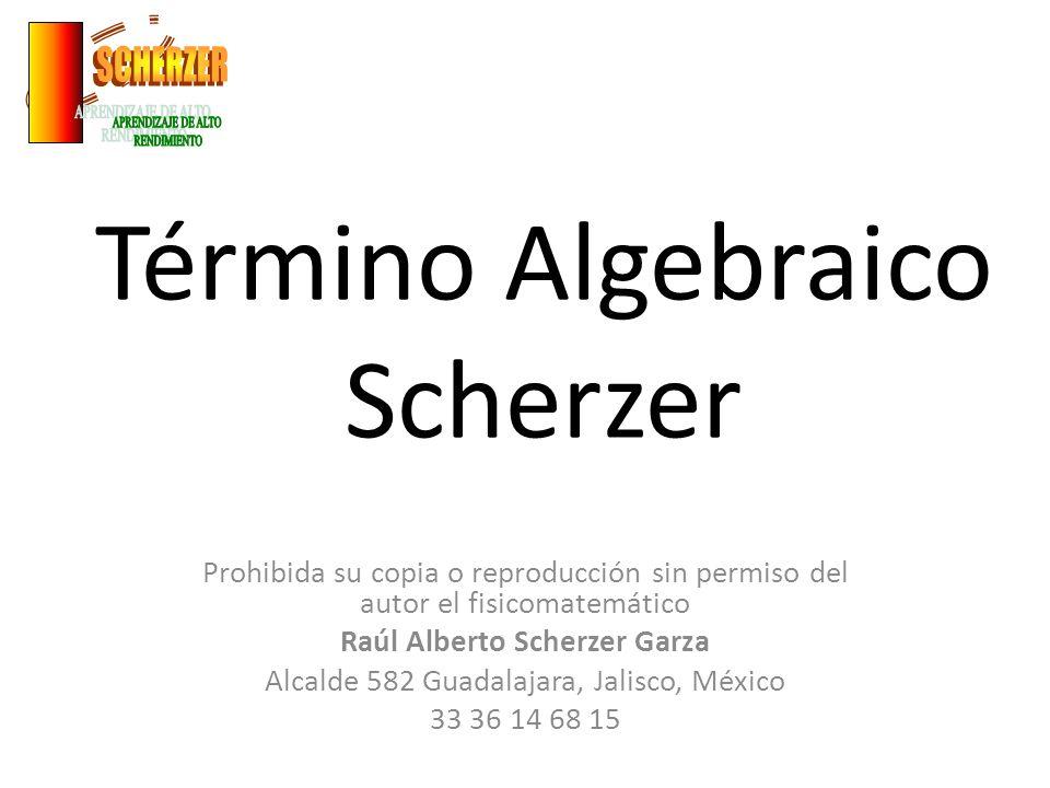 Término Algebraico Scherzer