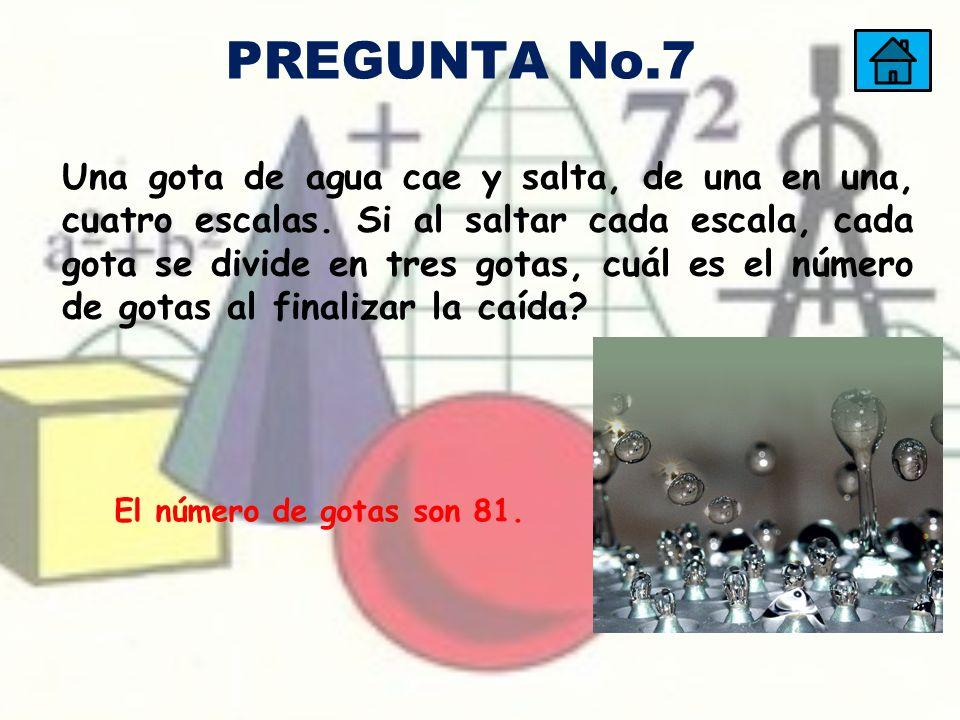 PREGUNTA No.7