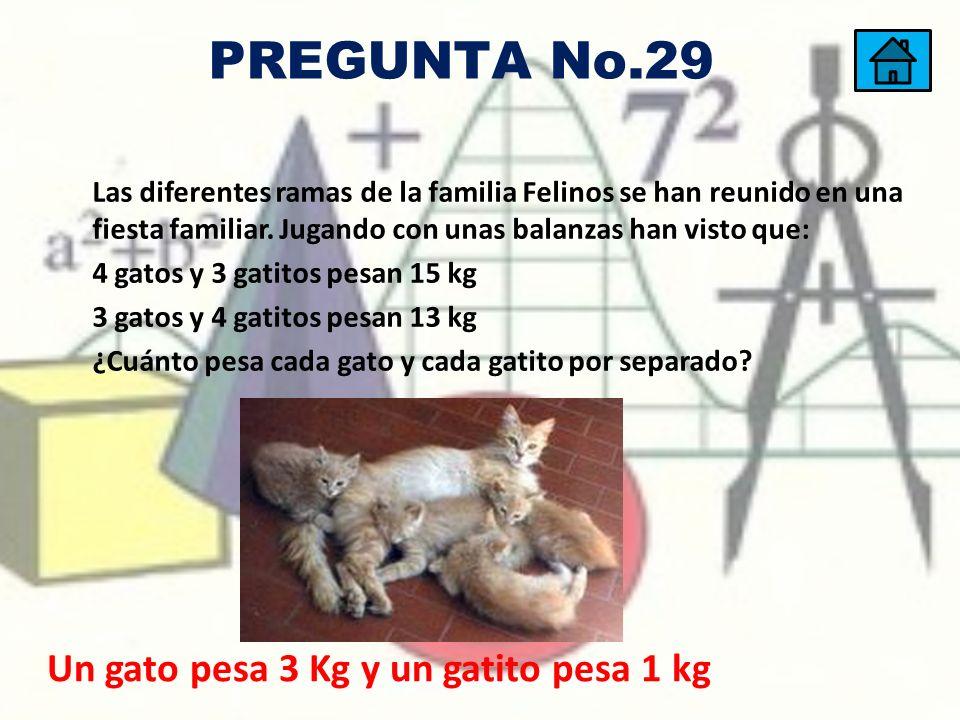 PREGUNTA No.29 Un gato pesa 3 Kg y un gatito pesa 1 kg