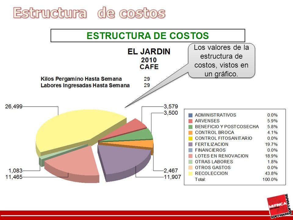 Los valores de la estructura de costos, vistos en un gráfico.