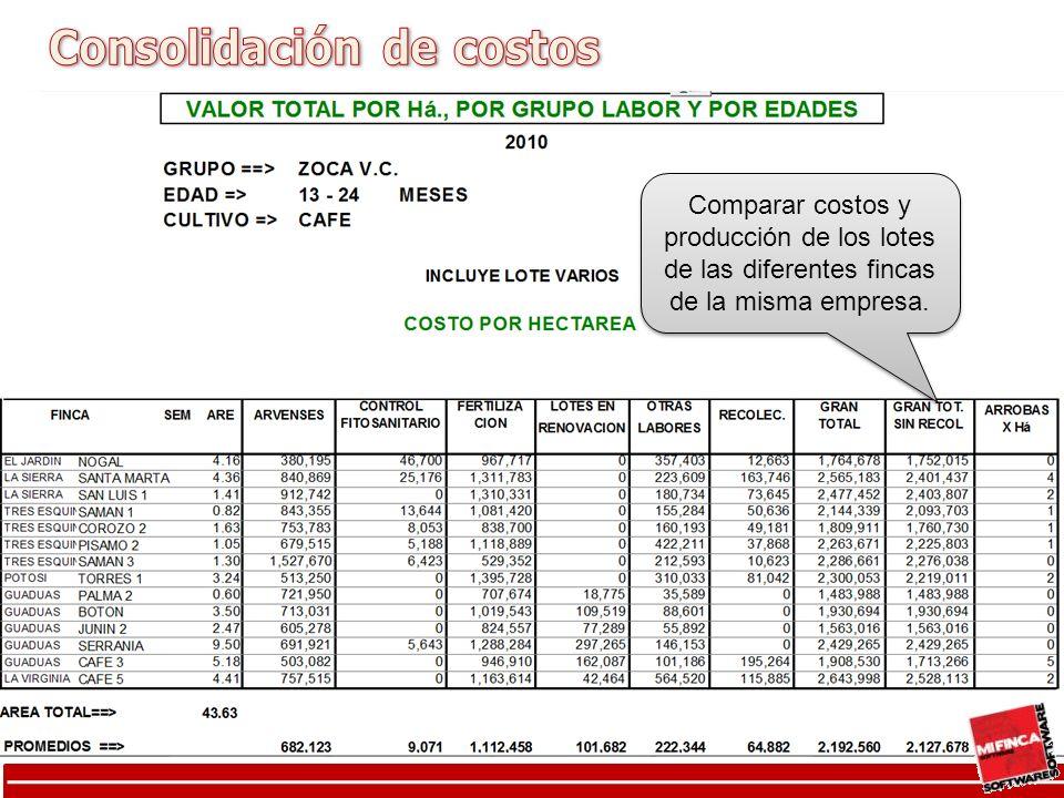 Consolidación de costo por grupos de labores por lote