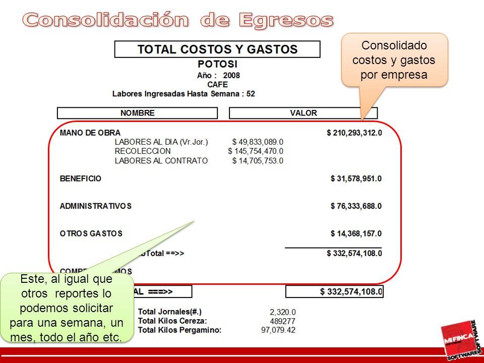 Consolidado costos y gastos por empresa
