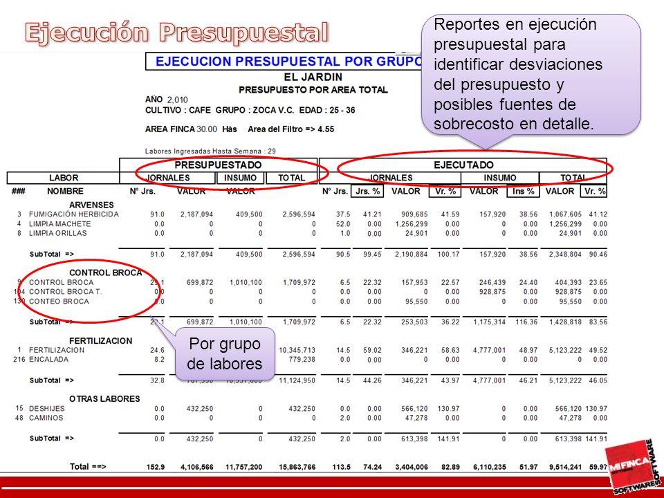 Reportes en ejecución presupuestal para identificar desviaciones del presupuesto y posibles fuentes de sobrecosto en detalle.
