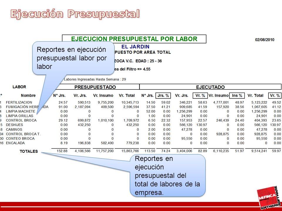 Reportes en ejecución presupuestal labor por labor