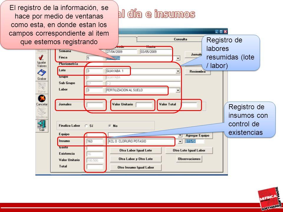 Registro de labores resumidas (lote / labor)