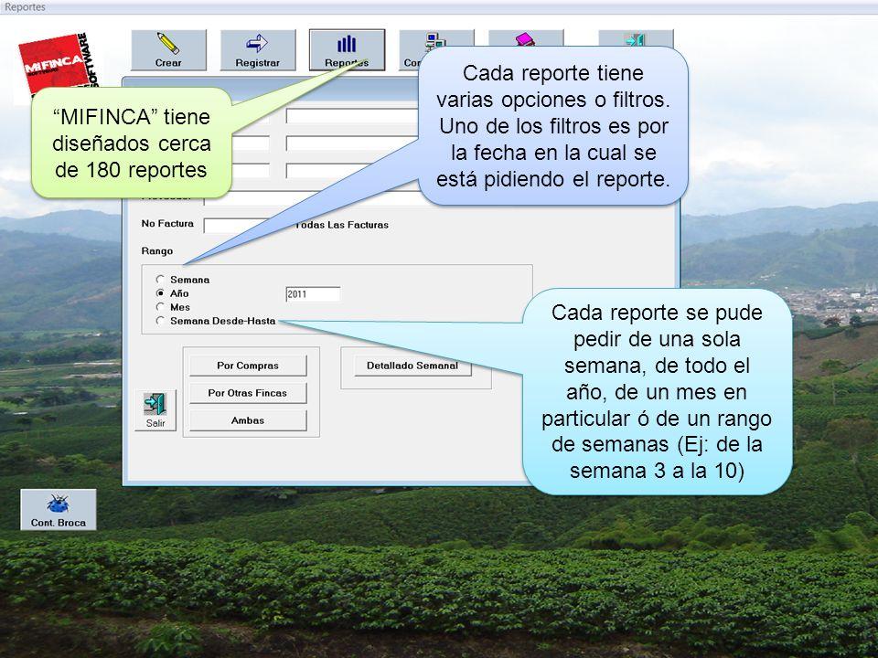 MIFINCA tiene diseñados cerca de 180 reportes