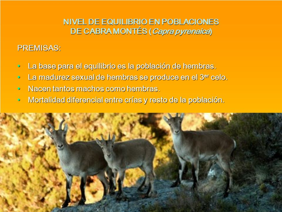 NIVEL DE EQUILIBRIO EN POBLACIONES DE CABRA MONTÉS (Capra pyrenaica)