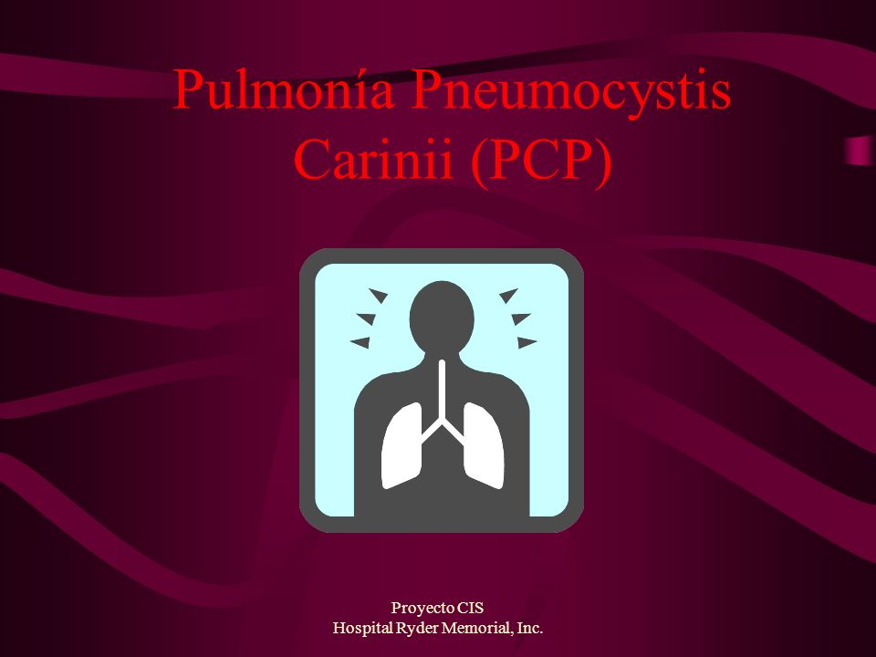 Pulmonía Pneumocystis Carinii (PCP)