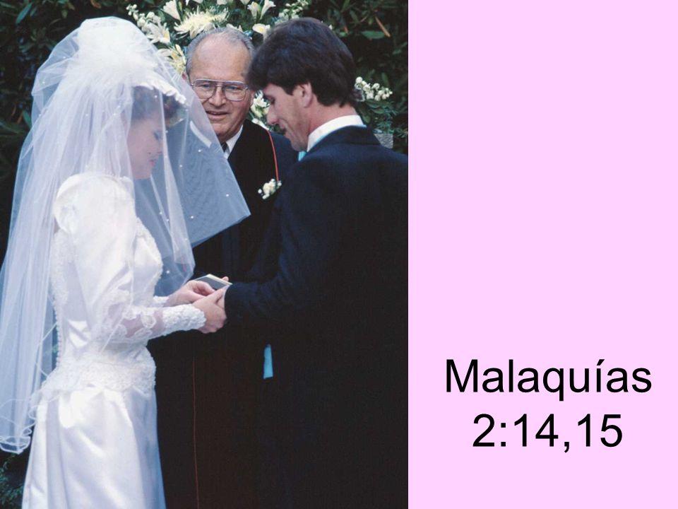 Malaquías 2:14,15