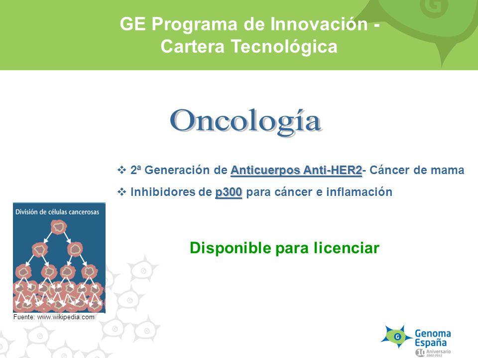Oncología GE Programa de Innovación - Cartera Tecnológica