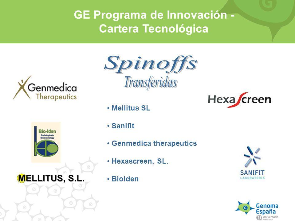GE Programa de Innovación - Cartera Tecnológica