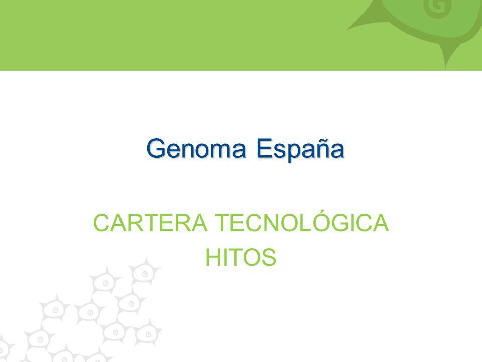 CARTERA TECNOLÓGICA HITOS